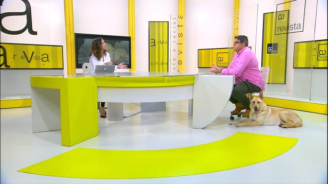 Octavio Villazala fálanos da importancia de como educar un can e como facelo - 10/11/2019 13:08