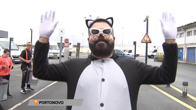 Os ghatos toman Portonovo! - 02/03/2020 19:10