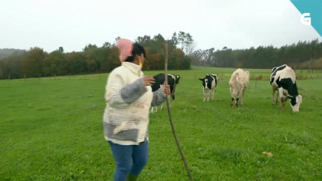 Susel enfróntase ás vacas de Elvira - 04/03/2020 22:30