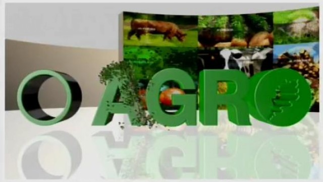 Risa, a vaca máis leiteira de Galicia - 21/07/2016 13:30