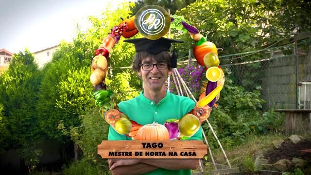 Facemos con Yago unha estrutura para os feixóns verdes - 05/12/2018 20:10