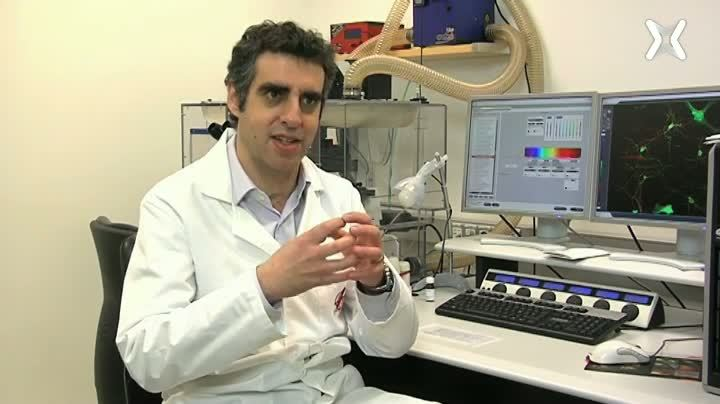 Epigenètica en càncer