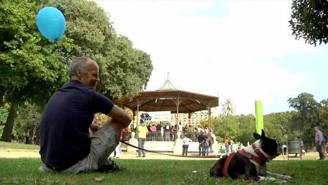Estany de Banyoles, Swing al Parc de la Ciutadella i el Museu del Càntir