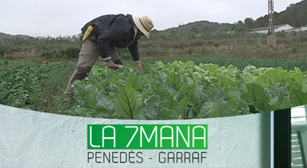La 7mana Penedès-Garraf 13-05-2016