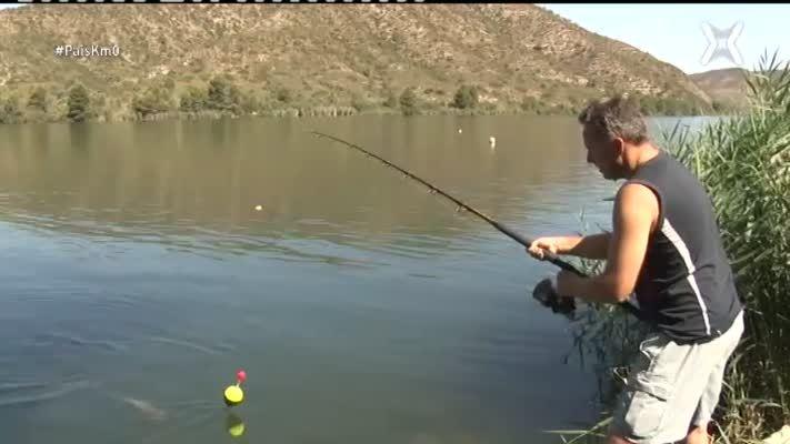 Pesca del silur al pantà de Mequinensa