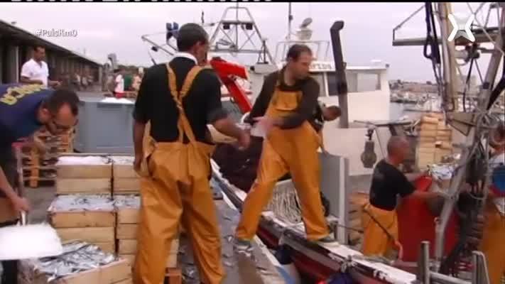 Port de pescadors