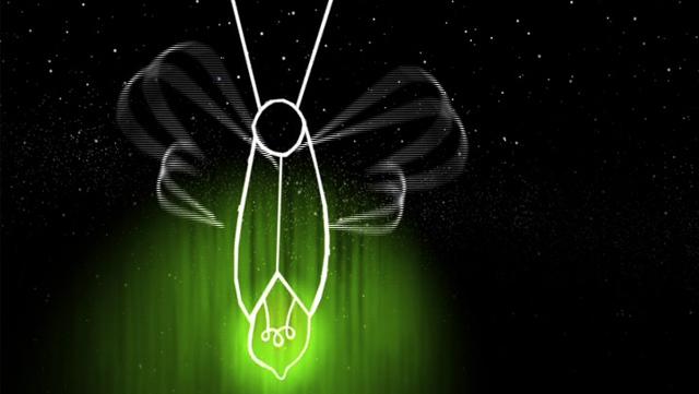 El perquè de les coses - La cuca de llum