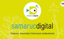 Imagen de SamarucDigital