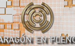 Imagen de Aragón en pleno