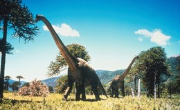 Imagen de Caminando entre dinosaurios en Atresplayer