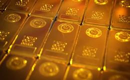 Imagen de La lucha del oro