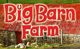 Imagen de Big Barn Farm
