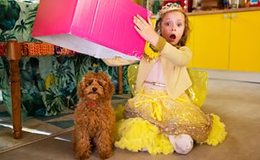 Imagen de Waffle the Wonder Dog en CBeebies