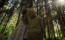 Imagen del vídeo Los bosques son de todos...¡cuídalos!
