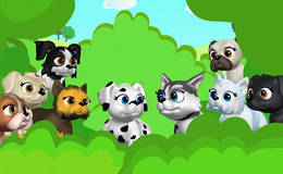 Imagen de Pet Parade en Clan TVE