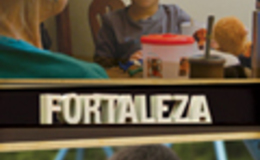 Imagen de Fortaleza en Conectate