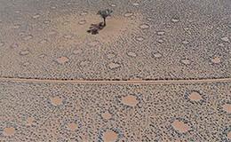 Imagen de Curiosidades de la Tierra en Discovery Max