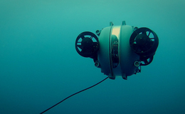 Imagen de Secretos del naufragio