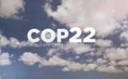 Imagen de COP22 en Euronews