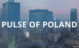 Imagen de Pulse Of Poland