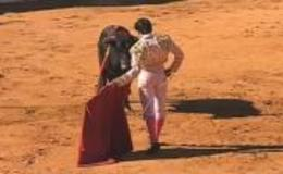 Imagen de Festival Taurino Extremeño en Canal Extremadura