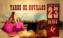 Imagen de Novillada de la Feria de San Juan de Badajoz en Canal Extremadura