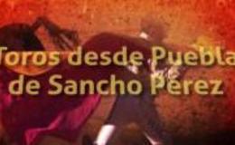 Imagen de Toros desde Puebla de Sancho Pérez en Canal Extremadura
