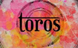 Imagen de Toros