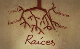 Imagen de Raíces en Hispan TV