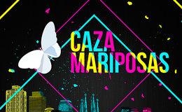 Imagen de Cazamariposas