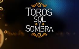 Imagen de Toros, Sol y Sombra