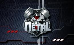 Imagen de Caballos de metal en RTPA (Asturias)