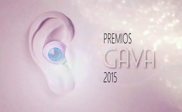 Imagen de GALA DE ENTREGA DE LOS PREMIOS GAVA