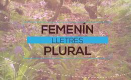 Imagen de Lletres femenín plural en RTPA (Asturias)