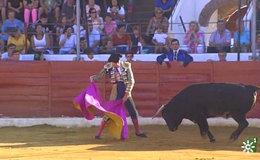 Imagen del vídeo Novillada desde Villanueva de Córdoba (29/09/2018)