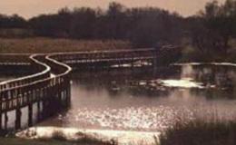 Imagen de El agua en Castilla-La Mancha en Castilla - La Mancha Media