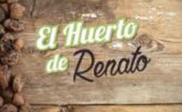 Imagen de El huerto de Renato en Castilla - La Mancha Media