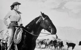 Imagen de El imperio del ganado en Castilla - La Mancha Media