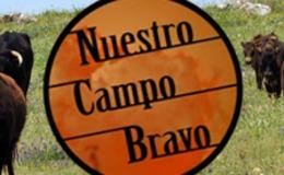 Imagen de Nuestro Campo Bravo
