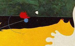 Imagen de Miró Centenari