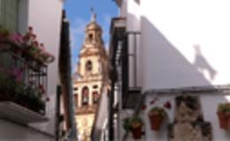 Imagen de Nexos: Alianza de Civilizaciones en RTVE