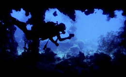 Imagen de Paraísos submarinos en RTVE