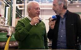 Imagen del vídeo Jaén. A los olivaritos voy por las tardes