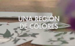 Imagen de Una Región de Colores