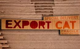 Imagen de Export.cat en TV3 (Cataluña)