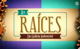 Imagen de As raíces en TVG (Galicia)