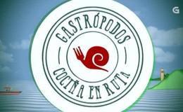 Imagen de Gastrópodos en TVG (Galicia)