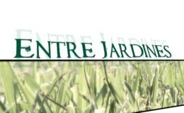Imagen de Entre jardines en UPV TV