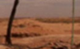 Imagen de Mirades de cargol en xip/tv (Cataluña)